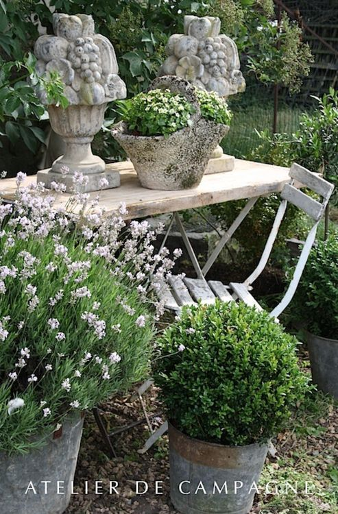 Topiary boxwood ball with vintage table and chair