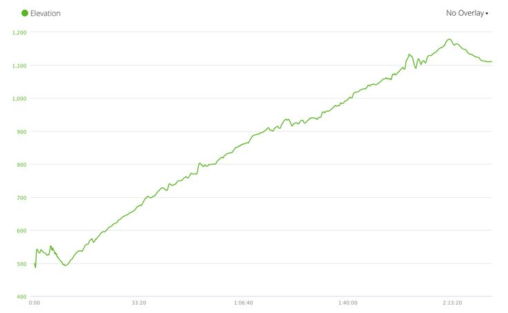 My long run from Delphi to Parnassos. The insane elevation!