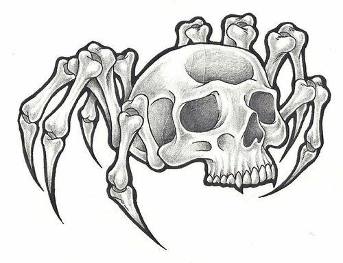 schädel malvorlagen  spinnenschädel  tattoo bild bei
