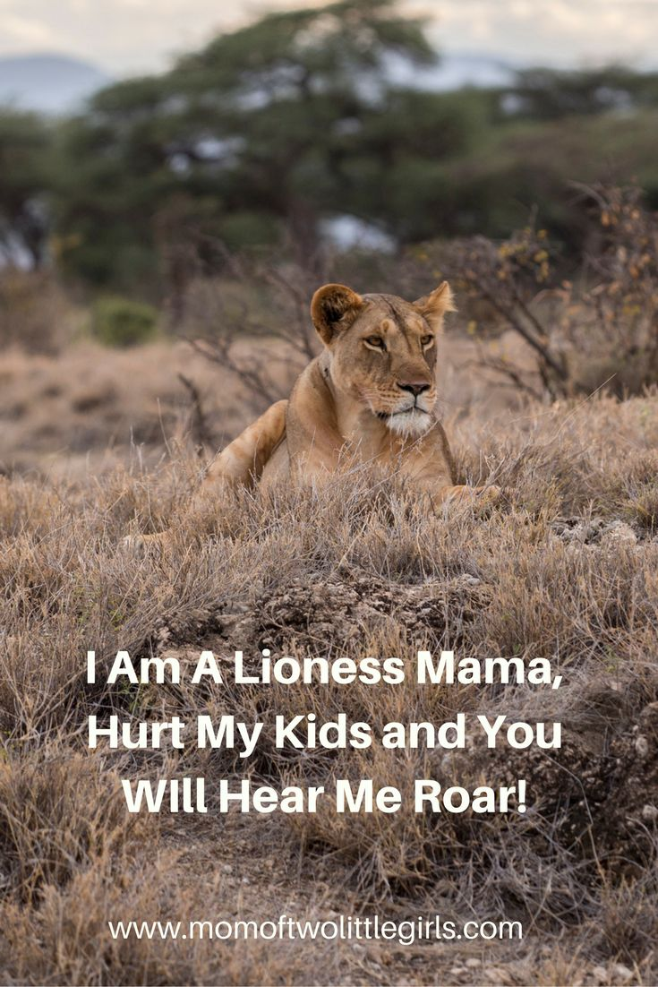 I Am A Lioness Mama, Hurt My Kids and You WIll Hear Me Roar!