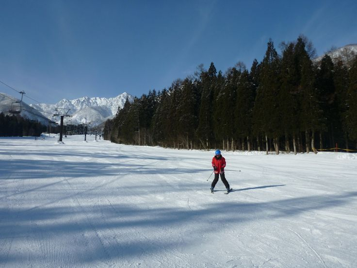 Skiing in Hakuba, a snowy paradise. However, all was not as it seemed..