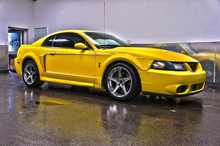 2003 mustang cobra svt | 2003 Ford Mustang SVT Cobra For Sale | Northwest Motorsport