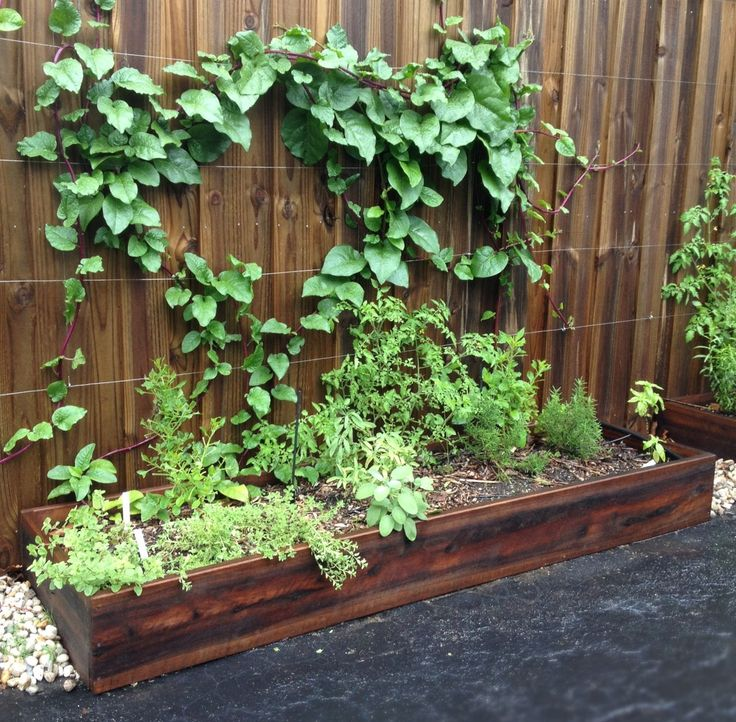 Herb Garden On Fence: 30 Best Images About HOME SPACE On Pinterest