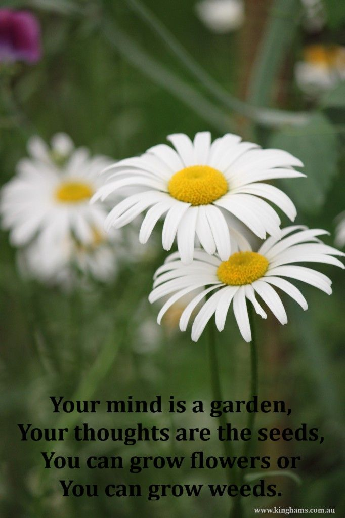 12 best images about Gardening Quotations and Poems on Pinterest ...