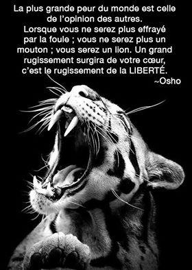 """""""La plus grande peur du monde est celle de l'opinion des autres. Lorsque vous ne serez plus effrayé par la foule ; vous ne serez plus un mouton ; vous serez un lion. Un grand rugissement surgira de votre cœur, c'est le rugissement de la LIBERTÉ."""" - [Osho]"""