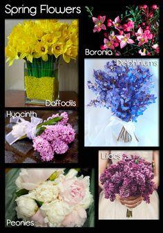 23 best Flower Types images on Pinterest Flowers Flower types