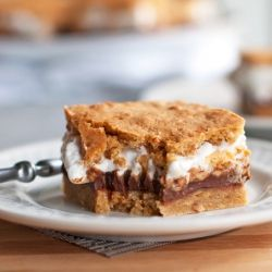 Peanut Butter S'mores Bars 1/2 cup butter, softened 1/4 cup packed ...