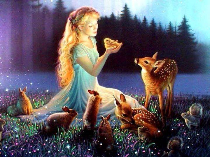 Dreamung little animals