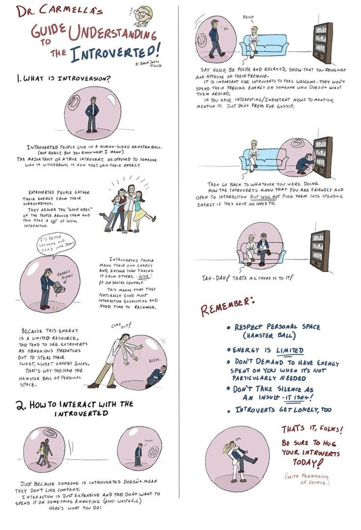 Infographic explaining what an introvert is