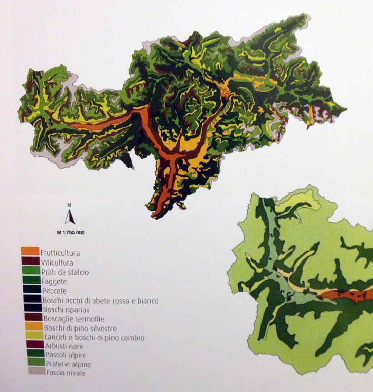 SOUTH TYROL VEGETATION MAP 2002 provincial administration