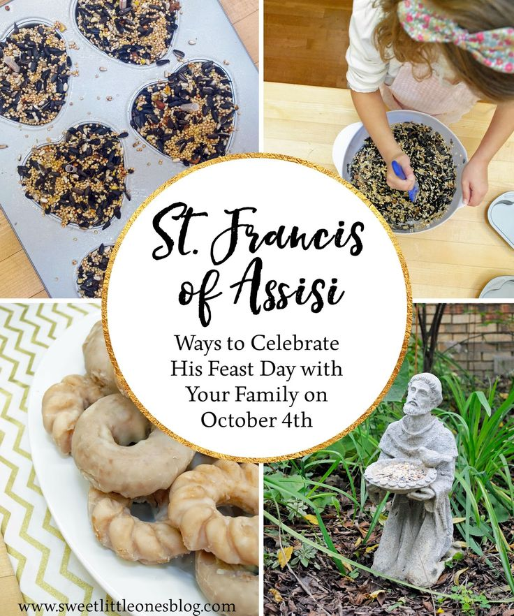 Catholic Liturgical Living: St. Francis of Assisi's Feast Day Celebration Ideas: Bird Seed Cakes Recipe, Blessing of the (Stuffed) Animals, Saint Francis's Peace Prayer Craft and Activity, Tonsure Donuts, Movie, Book, and more!  There are many easy, simple, and last minute ideas to celebrate St. Francis's feast day with your kids and family! www.sweetlittleonesblog.com