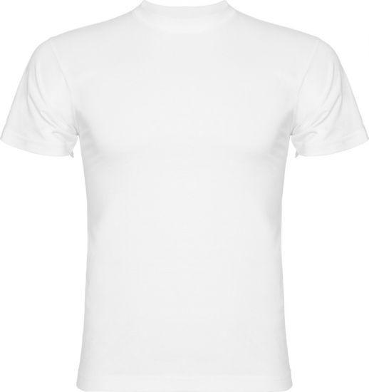 velkoobchodtextil.sk - Tričká - Pánske tričká krátky rukáv - Pánske tričko Promocional, 16 farieb
