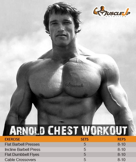 Arnold Schwarzenegger's Chest Workout https://www.facebook.com/photo.php?fbid=661090587268066