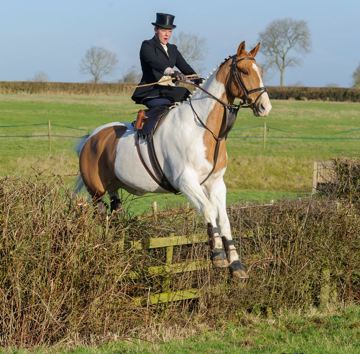 The Belvoir Hunt at Holwell. Photo by Nico Morgan Photography-- side saddle! This woman is braver than me.