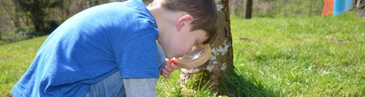 A mini beast hunt is a fun forest school activity but you don't have to have a forest nearby, a school field or nature area will also make a great location.
