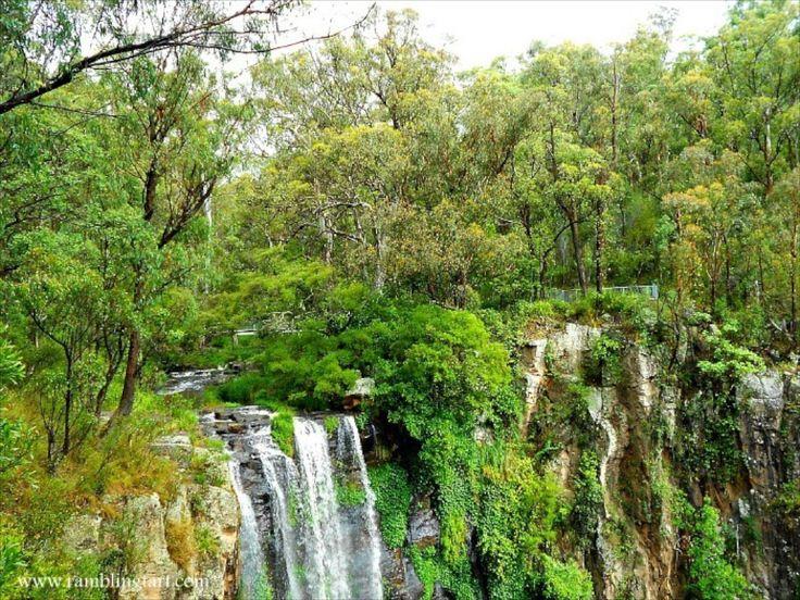 Main Range National Park in Australia Queensland parks Australia