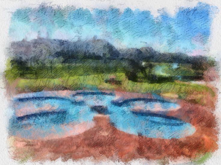 Flower Pool Crop Circle