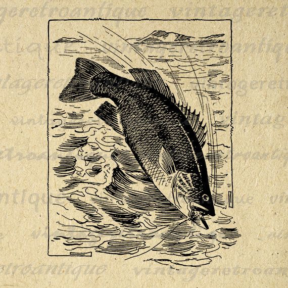 Fishing Digital Image Download Fish Graphic Antique Illustration Printable Vintage Clip Art Jpg Png Eps 18x18 HQ 300dpi No.3838 @ vintageretroantique.etsy.com #DigitalArt #Printable #Art #VintageRetroAntique #Digital #Clipart #Download