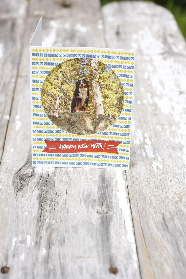 Letterpress Custom Holiday Cards Die Cut Dog Bernese Mountain Dog Boulder Denver Colorado