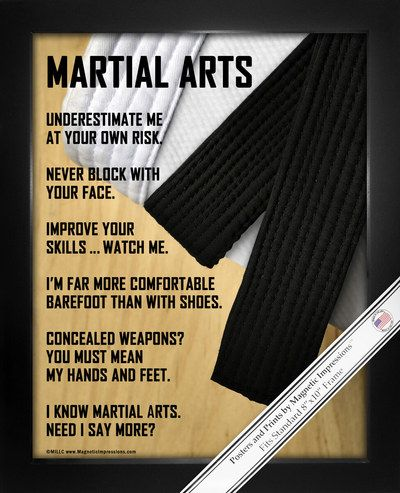 111 best Martial Arts images on Pinterest | Martial arts, Wing ...