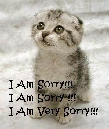 Teaching kids to apologize, handle conflict, and admit they were wrong. Kids need to be taught these things, they don't just know!  Third grade blog.