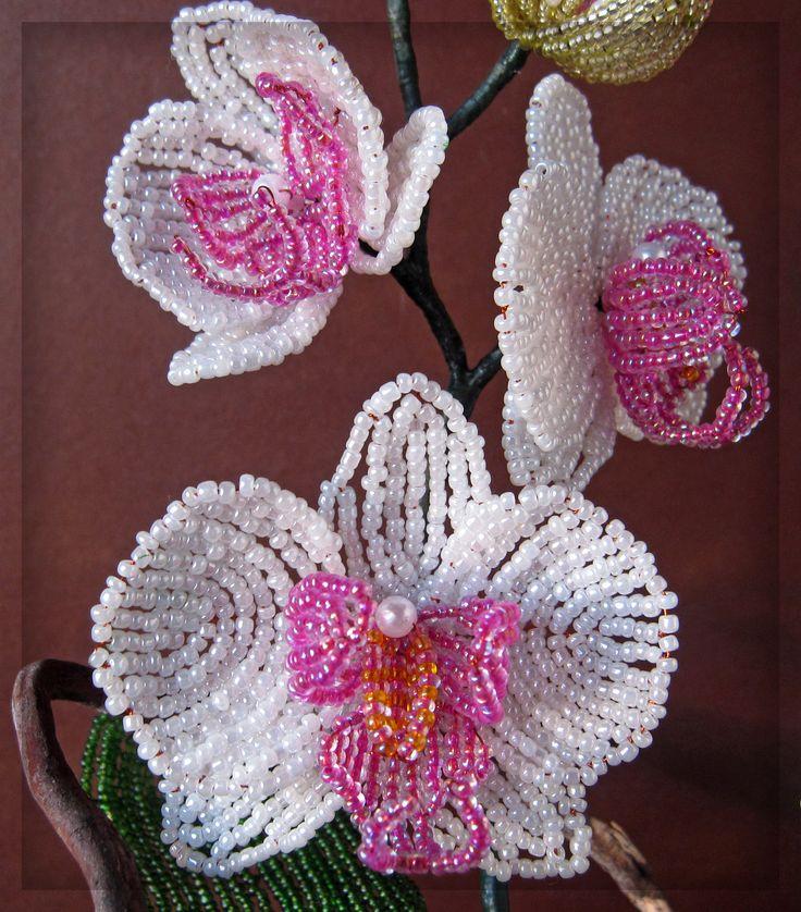 """Орхидея """"Нежность"""" из бисера (фрагмент)"""