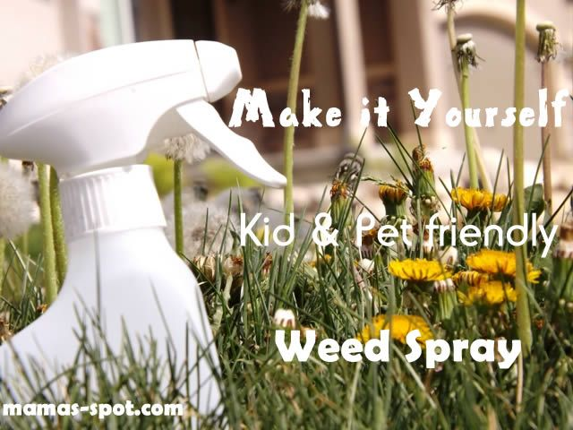 Do you have pesky weeds popping up in your yard? Get rid of them with only 3 ingredients!  This worked wonders on all my dandelions.