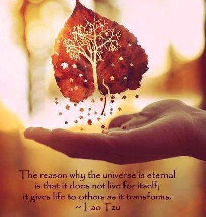 """""""The reason why the univese is eternal is that it does not live for itself; it gives life to others as it transforms."""" ~ Lao Tzu"""