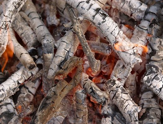Apply Ash Only To Those Areas Of The Garden That Benefit
