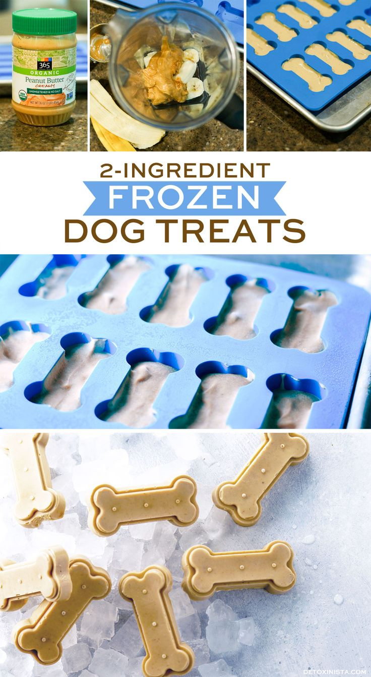 2-Ingredient Healthy Frozen Dog Treats. My dog LOVES these!