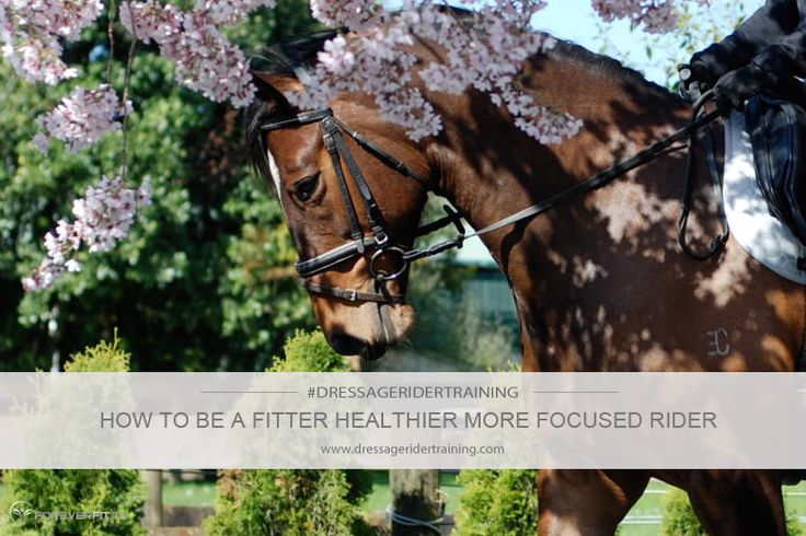 How to be a fitter healthier more focused rider