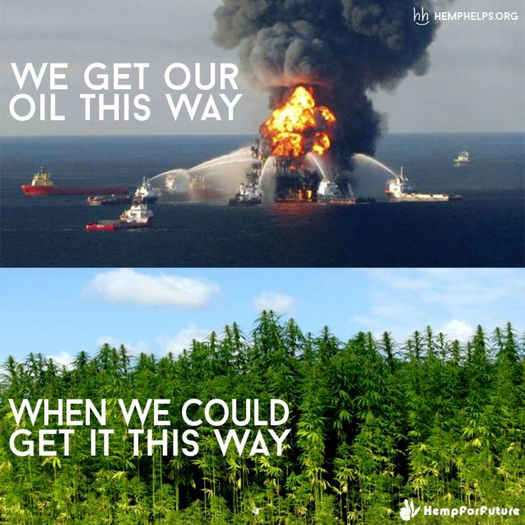 Crude oil has become a poison to the #planet.  #Hemp is the medicine.