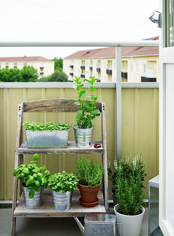 trappa med växter till balkongen