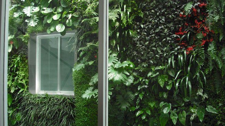 verde 360º aprovechando una gran variedad de plantas para dar color y textura