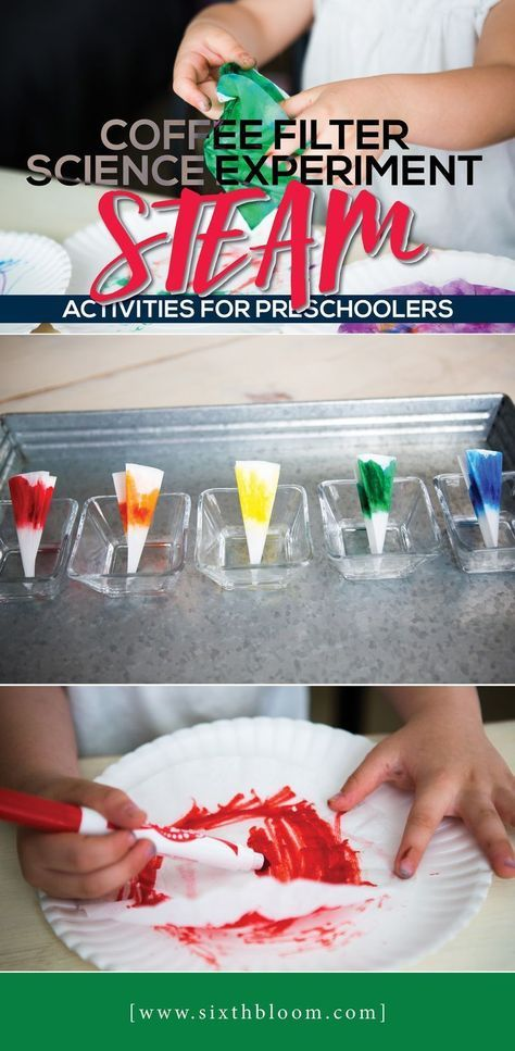 STEAM Activities for Preschoolers, STEAM, Science project for toddler, Science a... 2