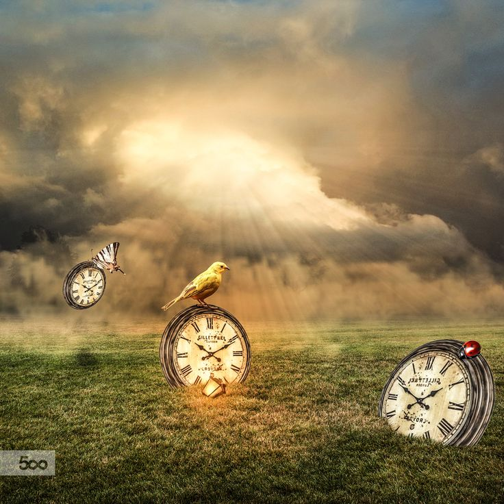 the time has come by Lapanlima on 500px