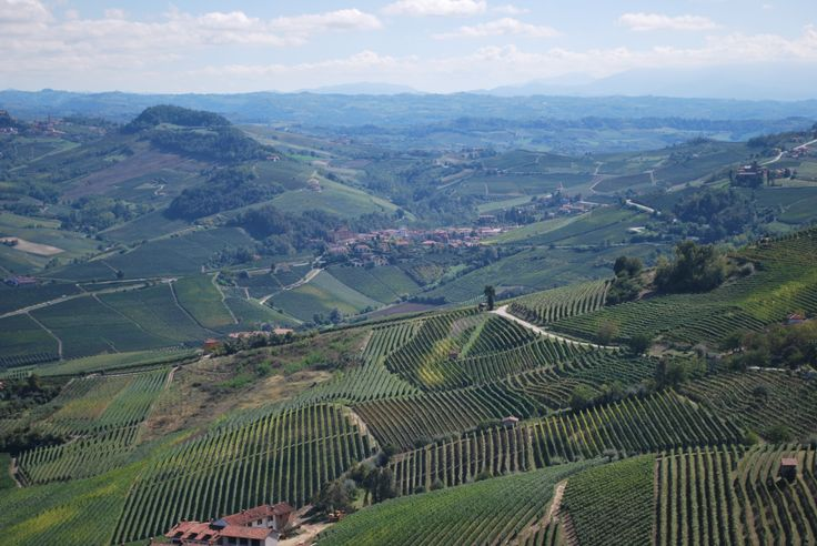 View from La Morra with Barolo