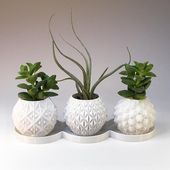 Mini Planters Succulent Planter Set Geometric Planter Set Of 3