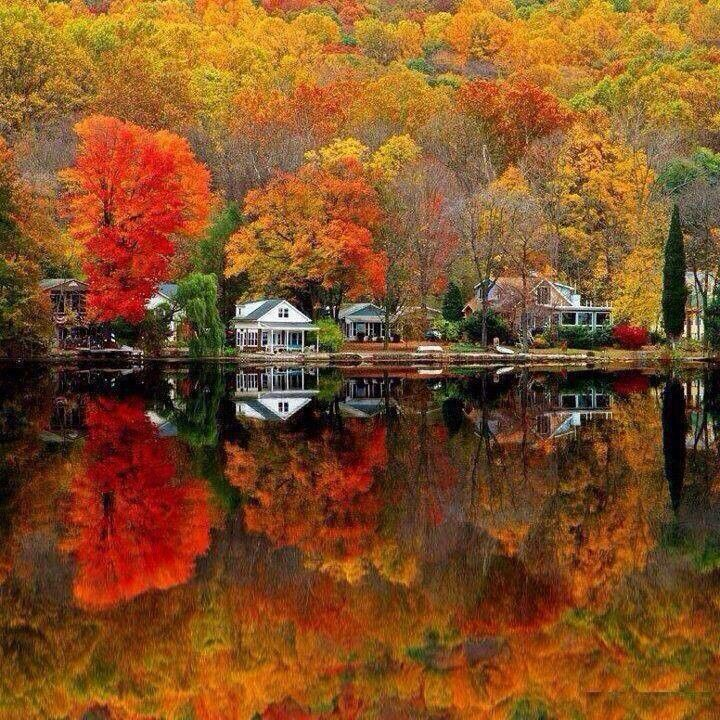 The beautiful colors of fall are best seen in New Jersey, USA