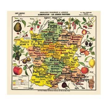 affiche : Deyrolle, culture des fruits en France