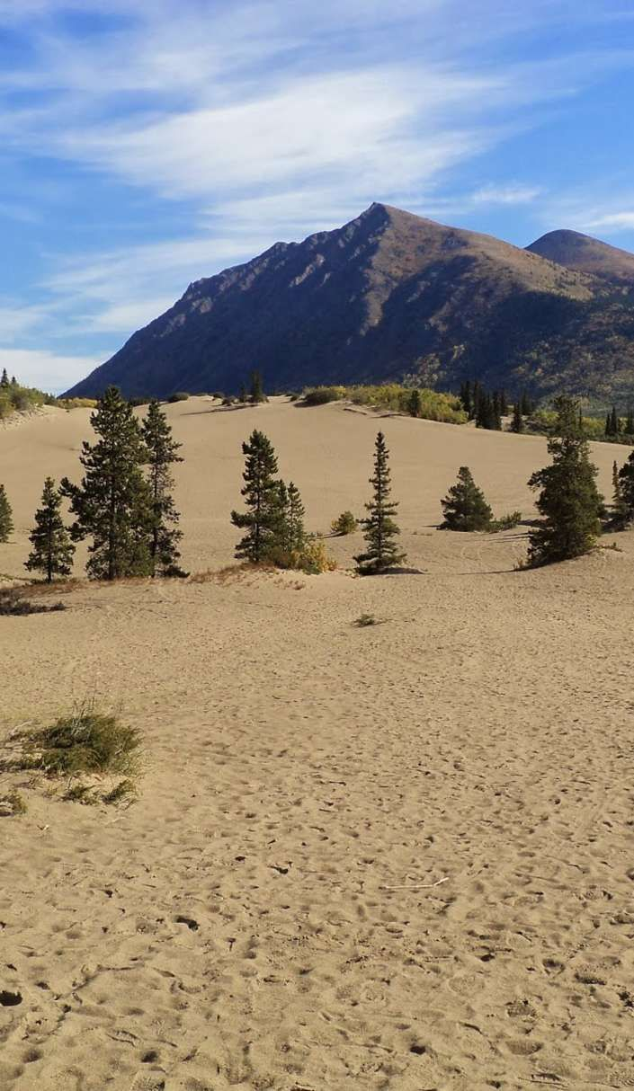 You can visit Carcross, the world's smallest desert... in Canada