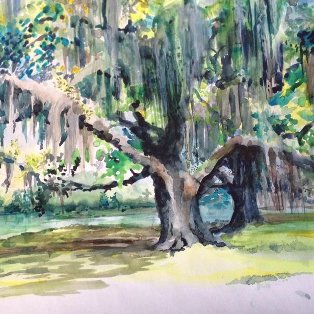 Live Oaks Dripping With Spanish Moss Are One Of The Most Beautiful Sights In The World 5th