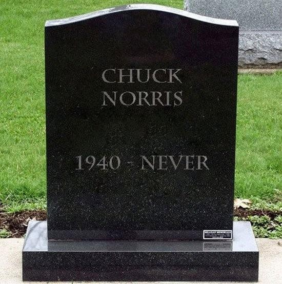 Chuck Norris works out, maybe you should too...  www.fitnessdojo.org