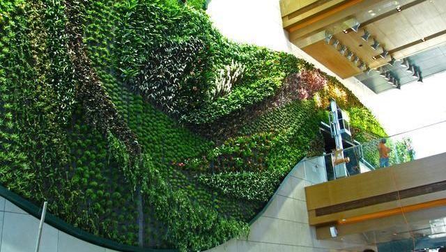 Jardines verticales: paredes tapizadas con plantas naturales
