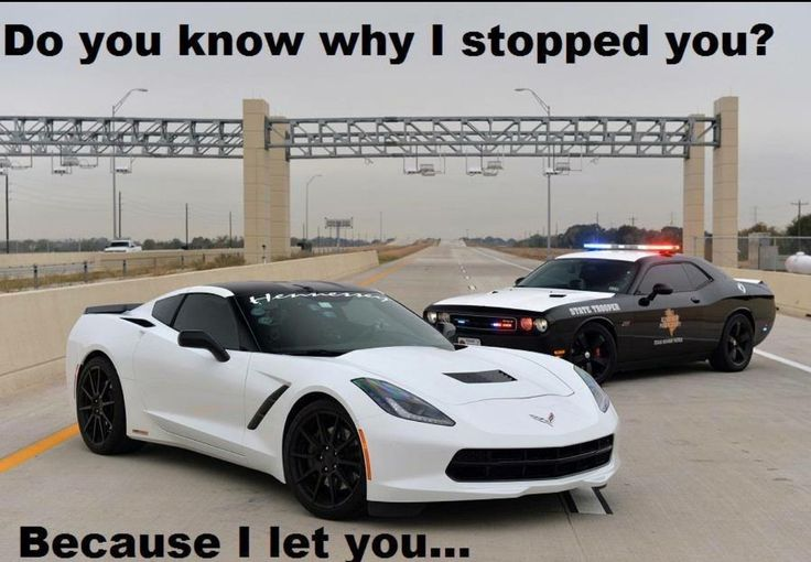 13 best funny corvette stuff images on pinterest car for Prestige motors clifton park
