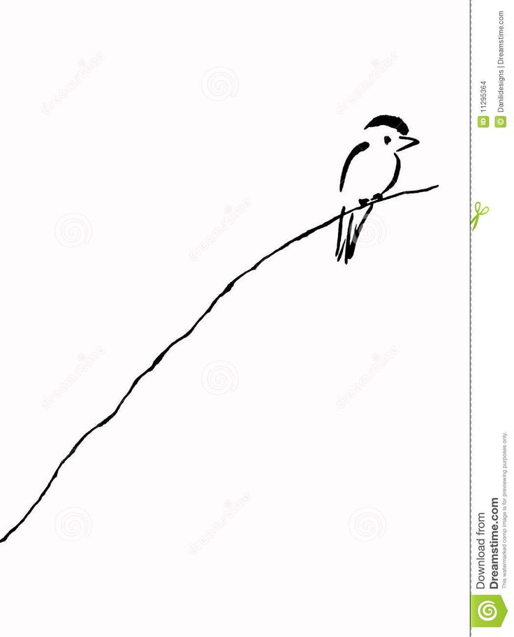 bird line drawing - Google Search
