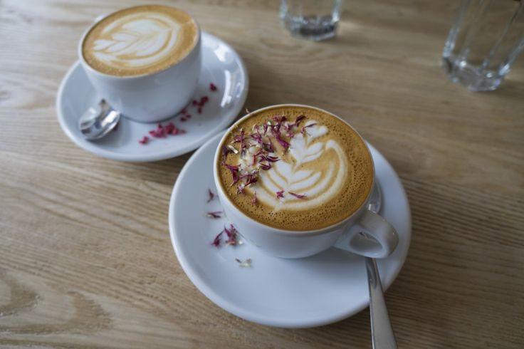 Delicious (and definitely beautiful) coffee at Rocket Bean Roastery. Riga, Latvia.