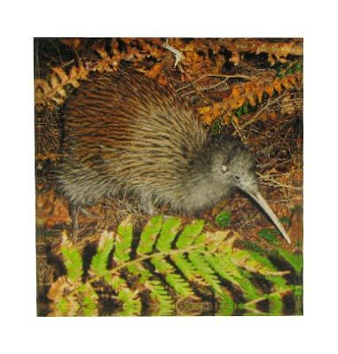 Kiwi Art Block Artearoa | Shop New Zealand NZ$35.90