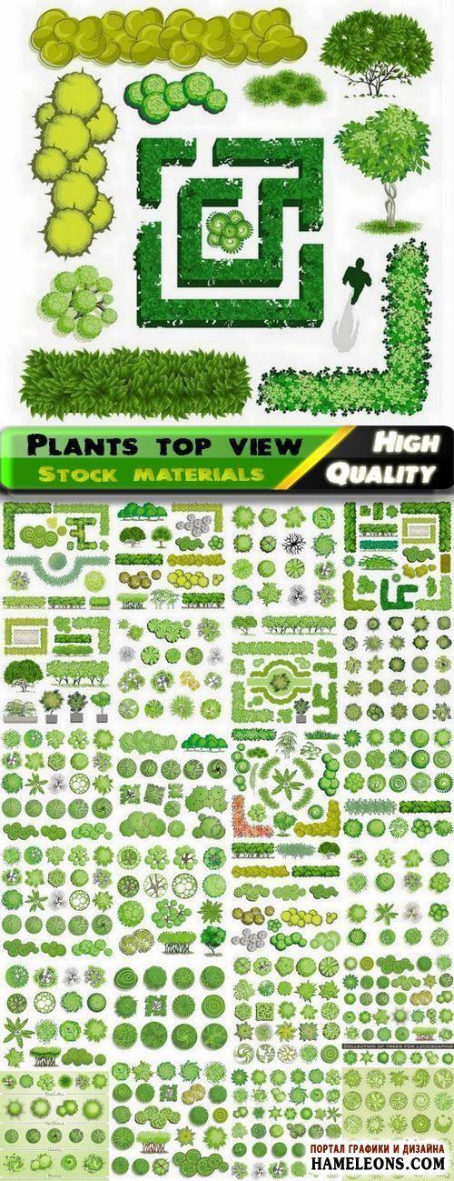 В векторе зеленые деревья, кусты - вид сверху | Illustrations of trees