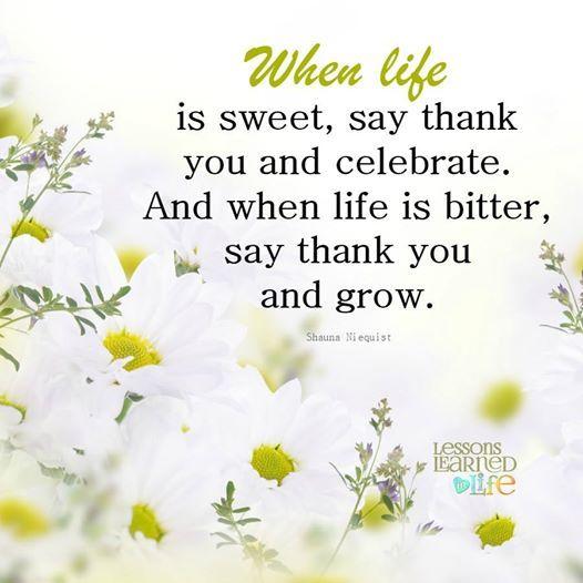 [Blog] Geniet van al het moois dat het leven te bieden aan heeft en wees dankbaar voor alle kansen op groei die op je pad komen. Vier het leven!